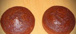 Два готовых шоколадных бисквита
