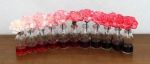 Интенсивность окрашивания пищевым красителем в зависимости от объема используемого красителя