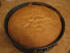 Готовый бисквит для десерта Тирамису