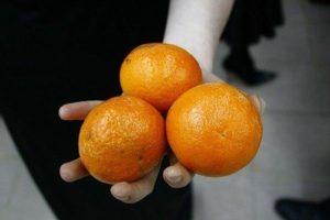 Свежие плоды апельсина